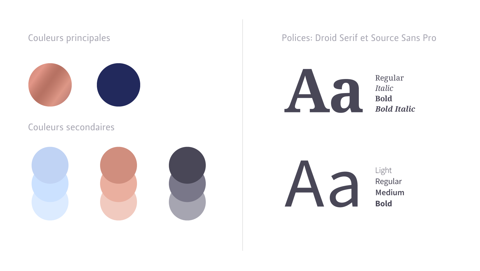 bvcv couleurs et polices